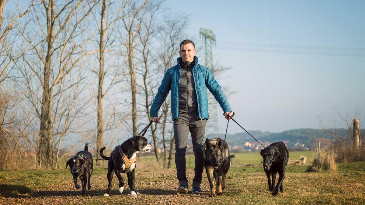 Steve Kaye von Personal Hundecoaching im Interview
