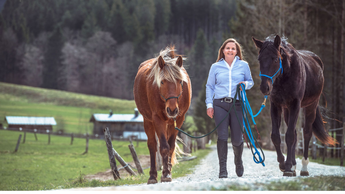 Katharina Theisinger von Creating Horseman